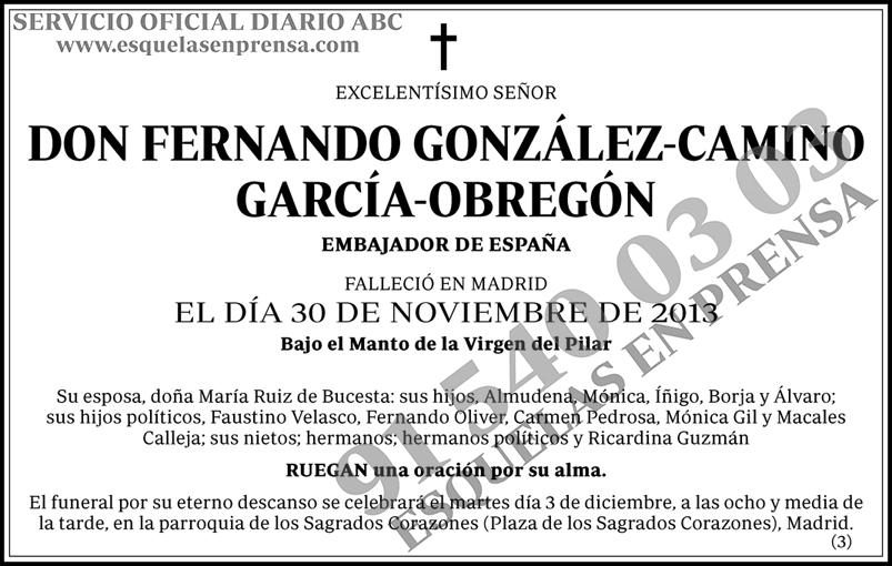 Fernando González-Camino-García-Obregón